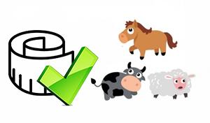 guide animaux pour écurie kids globe